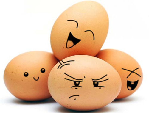 A minha cidade é um ovo